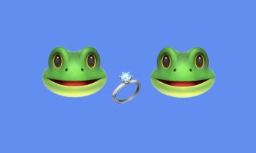 В Индии «женили» лягушек, чтобы вызвать дождь. Потом «развели» из-за непрекращающихся ливней