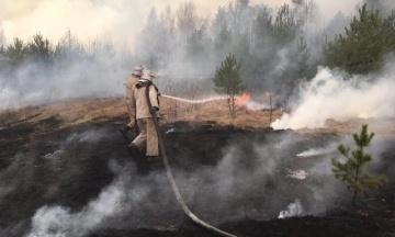 В Турции на курорте вспыхнул пожар — один спасатель погиб