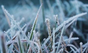 В Украину возвращаются ночные заморозки