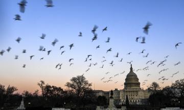 Остановка работы правительства в США: «Шатдаун» продлится до 2019 года, около 800 тысяч служащих не получают зарплату