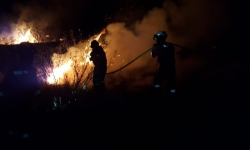 На Канарах вспыхнули сильные лесные пожары. Больше тысячи людей эвакуировали