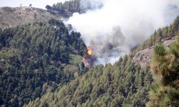 Через сильні лісові пожежі на Канарах влада евакуювала тисячі людей