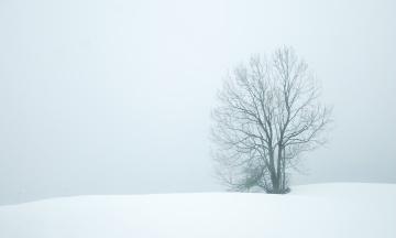 В Європі раптове похолодання виявилося смертельним для 13 осіб