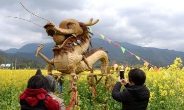 У Китаї учасники Фестивалю квітів встановили на полях опудала драконів і свинки Пеппи. Як вони виглядають?