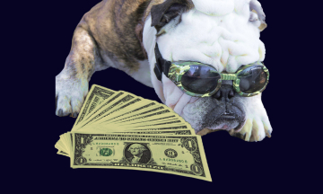 Племянник Эскобара нашел в его доме пакет с $18 миллионами. «Видение» показало, где искать