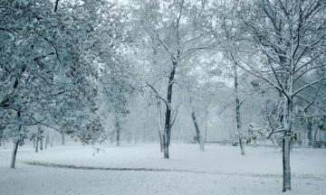 В первый день зимы в Украине выпало до 23 сантиметров снега. Ожидается ухудшение погоды