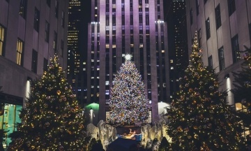 У США вибрали різдвяну ялинку для Рокфеллер-центру