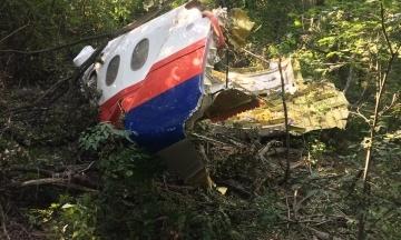 Гаазький суд відновлює розгляд справи MH17: 1 лютого розглядатимуть звернення родичів про компенсації