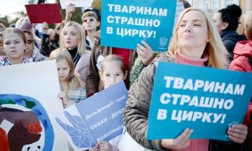 «Украина не первая страна, которая проходит этот путь». Кабмин одобрил запрет использования диких животных в цирках
