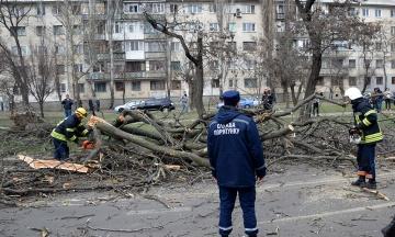 Через негоду в Україні 537 населених пунктів лишилися без світла
