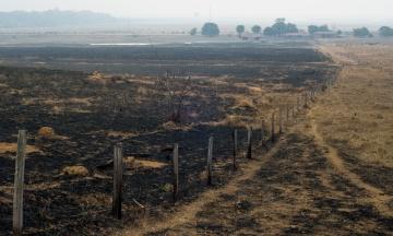 NASA: В атмосфере сильно подскочил уровень углерода из-за пожаров в Амазонии