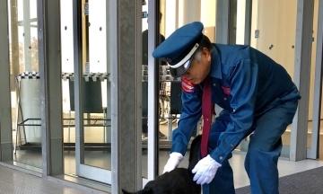 В Японії музей прославився завдяки парі котів. Вони два роки «воюють» з охоронцем за право потрапити в будівлю
