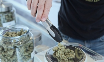Мексика зробила крок до повної легалізації марихуани. Країна може стати найбільшим ринком канабісу у світі