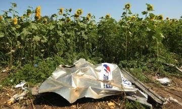США и Украина призвали Россию признать ответственность за уничтожение рейса МН17