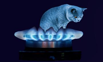 «Нафтогаз» решил, как защитить украинцев от скачков цен на газ — будет годовой тариф
