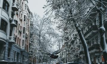 У Києві 2018 рік став одним з найтепліших з кінця XIX століття