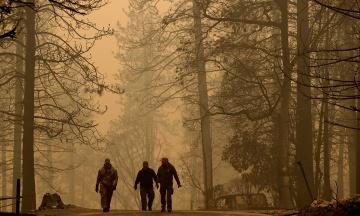 Трамп пригрозил перестать выделять деньги на борьбу с лесными пожарами в Калифорнии
