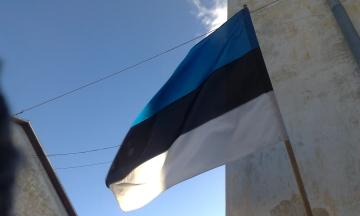 Естонія повернула додому вісьмох українців через порушення правила в'їзду