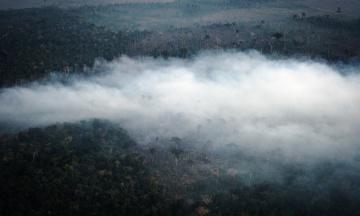 Палаючі ліси Амазонії почали гасити з літаків. В операції задіяні 40 тисяч військових