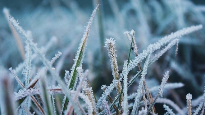 До України повертаються нічні заморозки