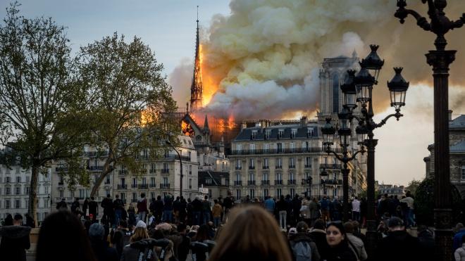 Пожар в соборе Парижской Богоматери: экозащитники требуют обеззараживания места возгорания