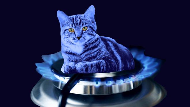 В Україні запровадять фіксований річний тариф на газ. Його можуть запустити у другому кварталі 2021 року