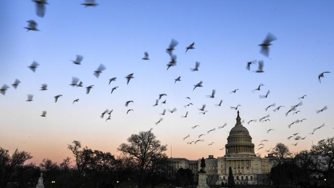 Трамп объявил чрезвычайную ситуацию в Вашингтоне. В столице опасаются наплыва экстремистов во время инаугурации Байдена