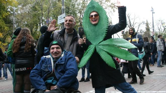Комитет Рады по правам человека поддержал петицию о легализации медицинского каннабиса
