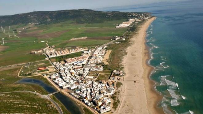 В Испании из-за коронавируса помыли хлоркой пляжи. Это убило местных животных