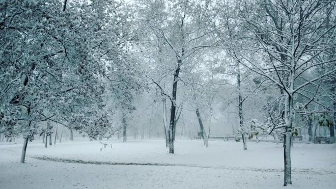 У перший день зими в Україні випало до 23 сантиметрів снігу. Очікується погіршення погоди