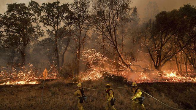 Калифорния в огне. Трамп уже не обвиняет законы и деревья