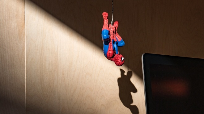 «Чому ти не помреш?» В Австралії поліція приїхала на виклик через крики на павука