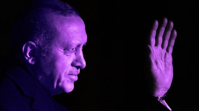 WSJ: Эрдоган жаловался Зеленскому на давление Путина из-за продажи Украине беспилотников