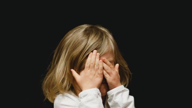 Порошенко подписал закон по которому неплательщиков алиментов могут арестовать и даже посадить на два года