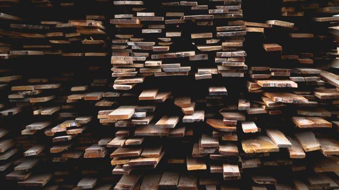 Порошенко ветировал закон об уголовной ответственности за контрабанду леса
