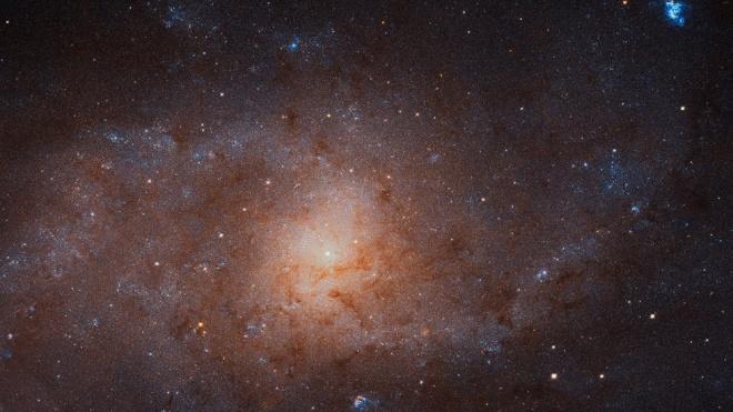 Телескоп «Хаббл»подсчитал количество звезд в ближайшей галактике