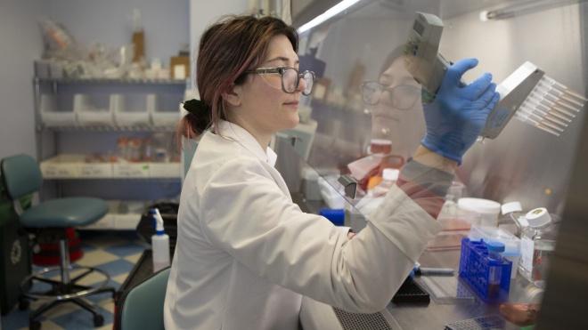 Вчені Китаю знайшли у кажанів нові коронавіруси. Деякі з них схожі зі збудником COVID-19