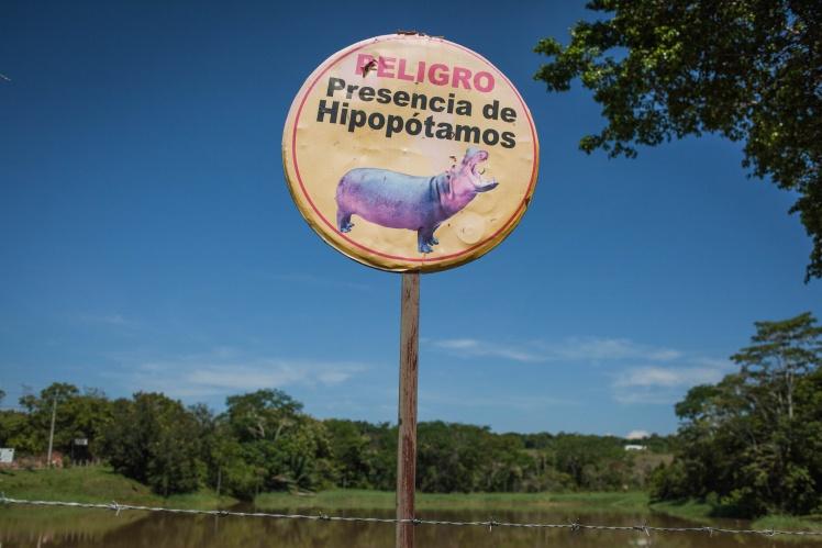 Знак, предупреждающий об опасности бегемотов, возле Hacienda Napoles, 18 августа 2019 года.