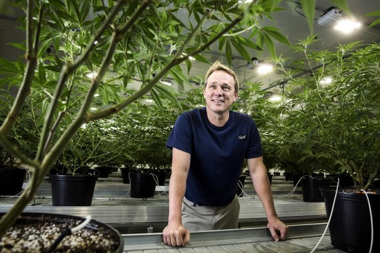 <p>Засновник канадської компанії з вирощування та продажу медичного канабісу Canopy Growth Брюс Лінтон на фабриці в містечку Смітс-Фолс, 19 грудня 2017 року.</p>