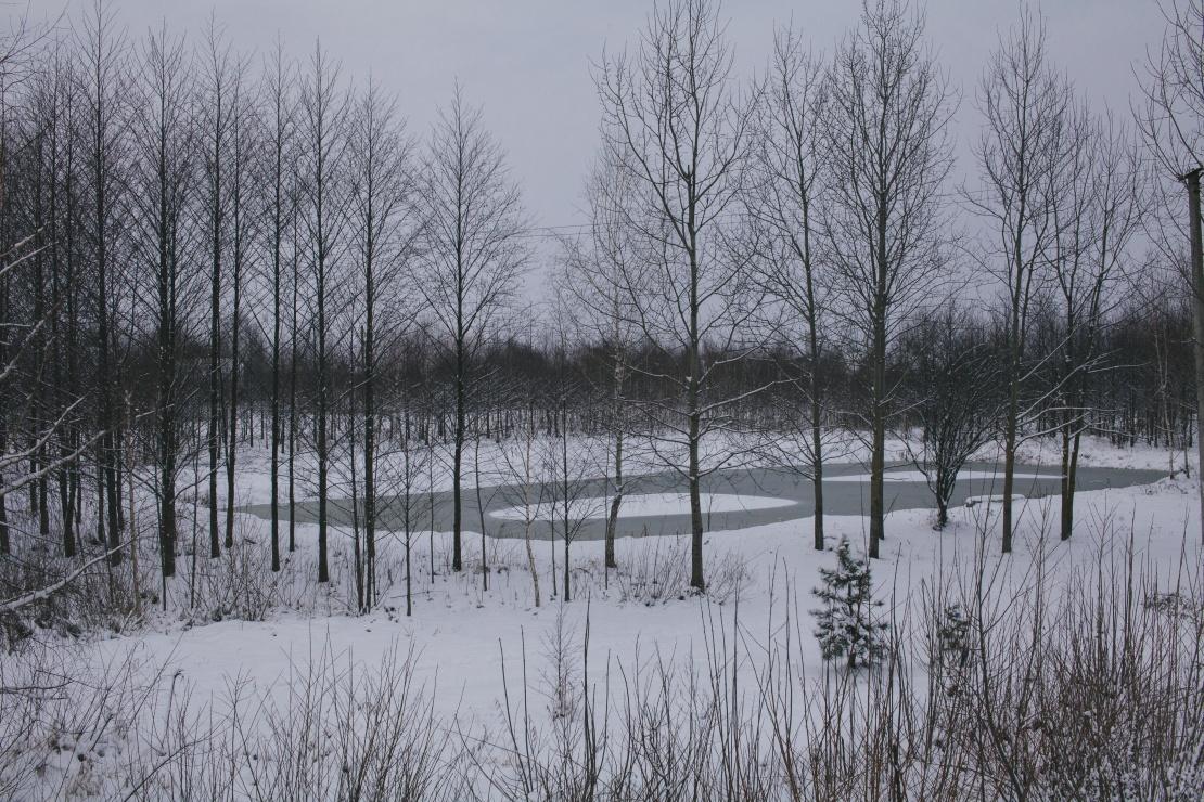 Парк, де у травні 2020 року затримали Максима.