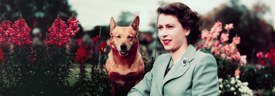 95 лет назад родилась Елизавета II. Вспоминаем лучшие цитаты британской королевы — о мире, отношениях в королевской семье и браке с принцем Филиппом