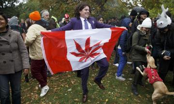 Канада легалізувала марихуану понад два роки тому. Тепер половина молоді — наркомани, чорний ринок зріс удвічі, компанії отримують надприбутки. Ні, ми жартуємо, насправді все навпаки