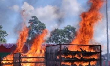 В Індії спалили 2 500 рогів носорогів, аби довести, що вони не мають лікувальних властивостей