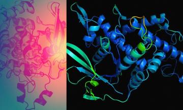 Нейросеть от DeepMind решила задачу, над которой биологи бились полвека. Это помогло бы справиться с коронавирусом намного раньше, а теперь пригодится против будущих пандемий — объясняем коротко