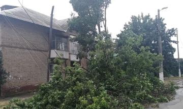 В Украине из-за непогоды подтоплены десятки домов, ветер повалил 90 деревьев и повредил 100 крыш. Погибли два человека