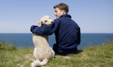 Как люди полюбили собак? Зооархеологи выяснили, с чего началась их дружба в ледниковом периоде. Пересказываем статью Sapiens о находках ученых
