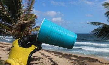 Науковці підрахували, що на дні Світового океану 14 мільйонів тонн мікропластику. Це в 35 разів більше, аніж на поверхні