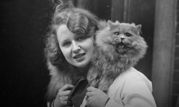 150 лет назад в Британии прошла первая в мире выставка кошек, с тех пор их устраивают ежегодно. Мы собрали самых стильных участников разных годов — они такие котики!