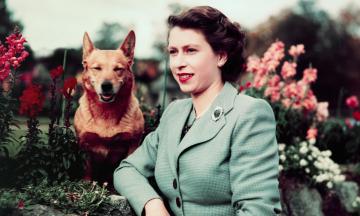 95 років тому народилася Єлизавета ІІ. Згадуємо найкращі цитати британської королеви — про мир, стосунки в королівській родині та шлюб з принцом Філіпом