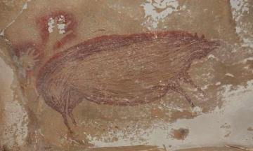 В одній з печер Індонезії виявили найстаріше у світі зображення тварини